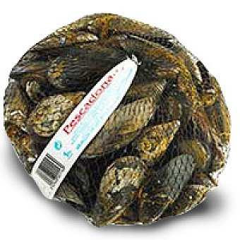Mejillón de Roca 1,0 kg
