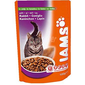 IAMS Conejo en gelatina para gatos bolsa 100 g Bolsa 100 g