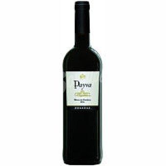 Reserva Paiva Vino Tinto Extremadura Botella 75 cl