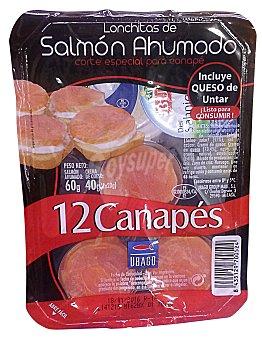 Ubago Canapes salmon ahumado y queso Paquete 100 g