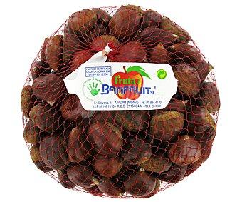 Fruto Seco Castaña Cruda 1kg
