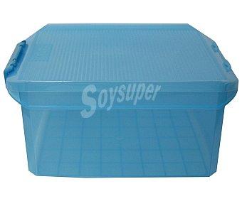 TATAY Caja multiusos con tapa color morado translúcido, 14 litros 1 Unidad