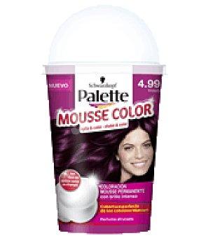 Palette Mousse Color 4.99 Violeta 1 ud