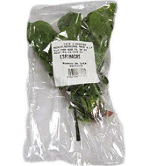 Espinaca Manojo de 500 g