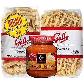 Gallo Lote de 2 pastas italianas de salsa parmesana envase 165 g + regalo de un libro de recetas 500 g + 1