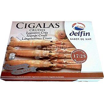 Delfín Cigalas crudas 17-25 piezas Estuche 500 g neto escurrido