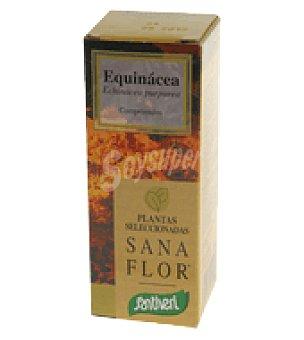 Santiveri Plantas equinacea comprimido 26 g
