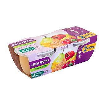 Hacendado Tarrito cinco frutas y fibra a partir 4 meses Tarrina pack 2 x 200 g - 400 g