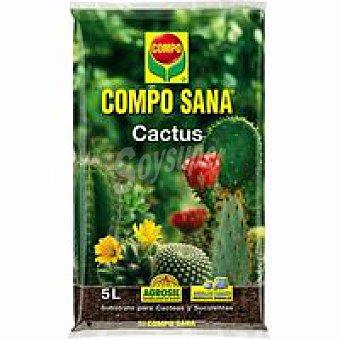 Compo Compo sana cactus Pack 5