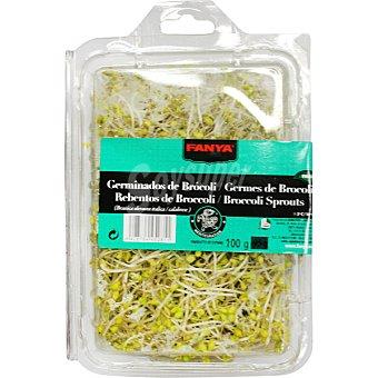 Fanya Germinados de broculi Tarrina 100 g