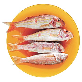 Salmonetes de playa gordos Al peso 1 kg