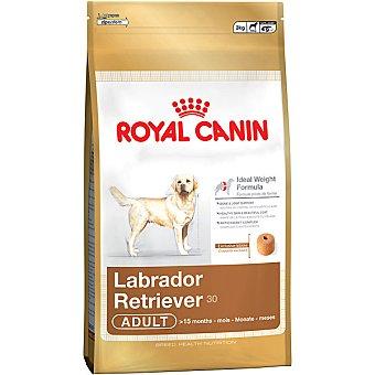 Royal Canin Adult alimento completo especial para perros de raza labrador retriever desde los 15 meses Bolsa 3 kg
