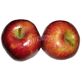 Manzana fuj extra al peso