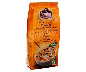 Santiveri Noglut Cereales muesli con frutas y frutos secos aptos para dietas sin gluten y sin lactosa (controlado por la face) Bolsa 250 g