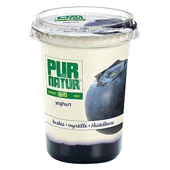 Pur Natur Yogur bio arándano 500 g