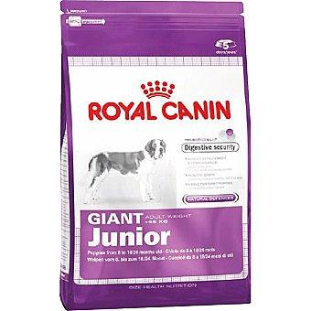 ROYAL CANIN JUNIOR Producto especial para perros giant en la segunda fase de crecimiento hasta 18-24 meses bolsa 15 kg Bolsa 15 kg