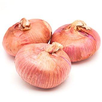 Cebolla roja 1 kg