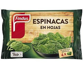 FINDUS Espinacas en hojas 1 Kilogramo