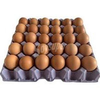 NOROVO Huevo fresco M 2,5 docenas