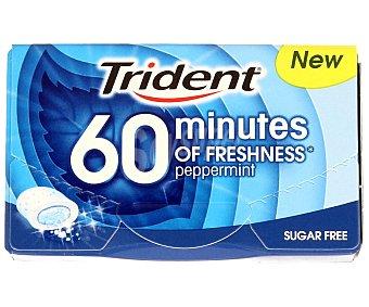 TRIDENT 40 Min. Chicles sabor menta 20 Gramos