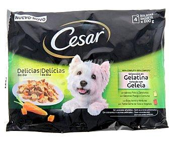 Cesar Alimento completo rico en pollo con zanahorias en salsa y buey tierno con verduras en salsa para perros adultos Pack de 4 unidades de 100 gramos