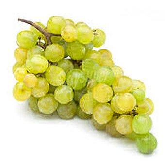 Uva blanca Moscatel 500 g