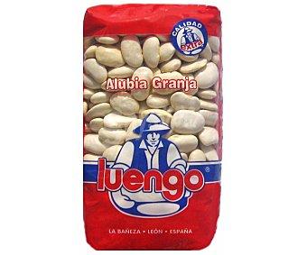 Luengo Alubia de granja Paquete 500 g