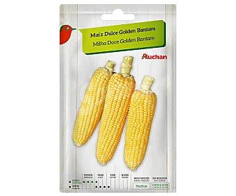Producto Alcampo Sobre de semillas para sembrar maiz dulce de la variedad Golden Bantam alcampo