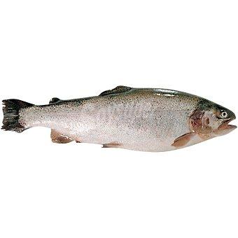 Trucha de los fiordos kg 100 gramos