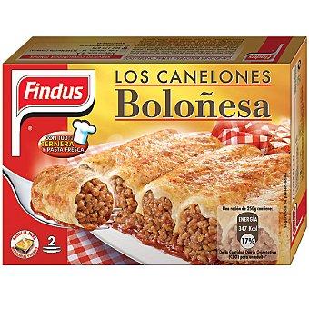 Findus Canelones boloñesa Estuche 500 g
