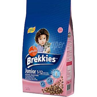 Brekkies Affinity Comida de gatos Special Junior con sabrosas partículas con yogur  paquete de 1,5 kg