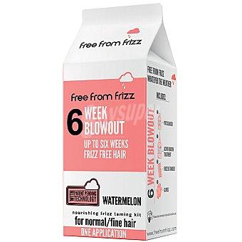 FREE FROM FRIZZ Alisador con keratina de cabello fino hasta 6 semanas sin encrespamiento una aplicación Caja 1 unidad