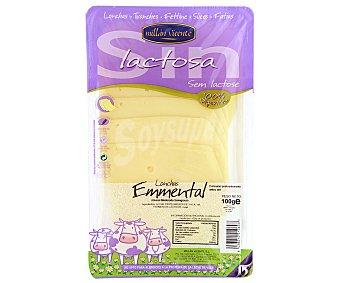 M. VICENETE Queso de Lonchas Emmental s/lactosa M. Vicente 100 gramos