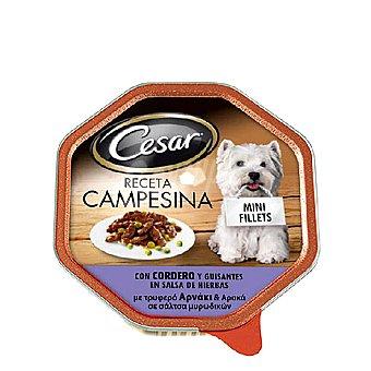CESAR Alimento para perro en salsa con cordero y verduras de La Huerta  Tarrina de 150 g