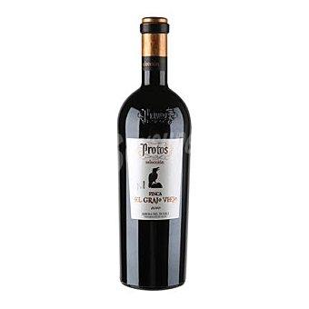 Protos Vino tinto Finca el Grajo Viejo D.O. Ribera del Duero 75 cl