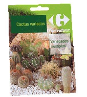 Carrefour Cactus mezcla