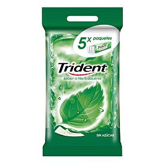 Trident Chicles de clorofila en láminas 5 unidades 67,5 gramos