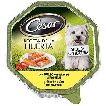 Cesar Pollo cubierto de verduritas 150 gr