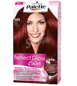 Palette Tinte Perfect Gloss Color 589 Rojo Pasión 1 ud