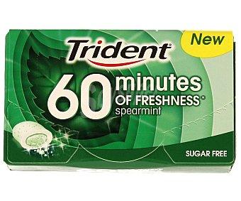Trident Chicle 40 minutos hierbabuena 20 g