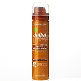 Delial Garnier Bruma autobronceadora facial piel oscura Bote 125 ml