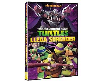 PARAMOUNT T. Ninja llega Sheredder