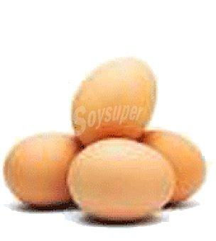 Teror Huevos S 10 unidades