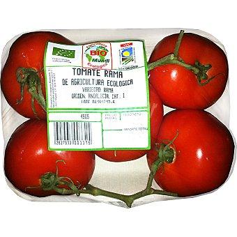 Biomundi Tomate rama ecológico peso aproximado Bandeja 650 g