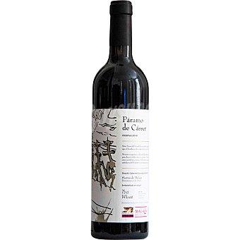 PARAMO DE CASSER Vino tinto reserva D.O. Sierras de Malaga botella 75 cl Botella 75 cl