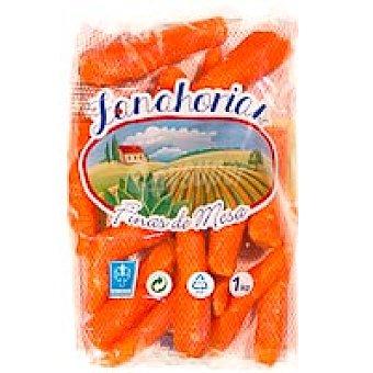 Zanahoria Competitividad 1kg