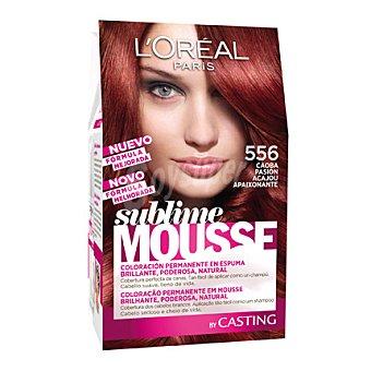 Sublime L'Oréal Paris Tinte nº 556 Caoba Pasión 1 ud