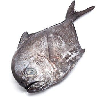 Palometa-Zapatero 1,0 kg