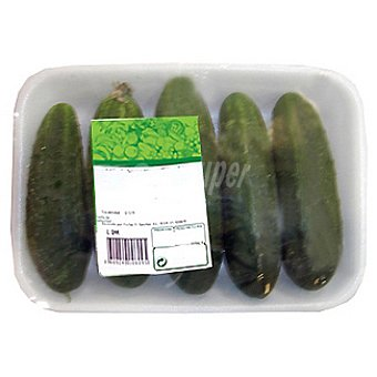 Pepino Francés (Negro) - Peso Aproximado Bandeja 1 kg