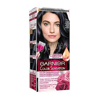 Color Sensation Garnier Tinte Negro Azulado Nº 2,1 Caja 1 ud